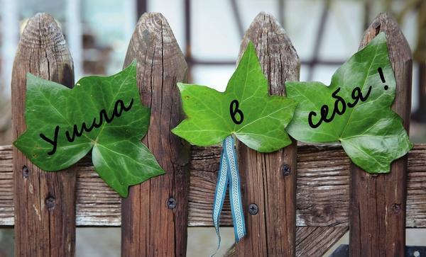 Недолго думая, можно оставить такое спонтанное сообщение на листьях, прикрепив их между планками забора или на закрытой входной двери.