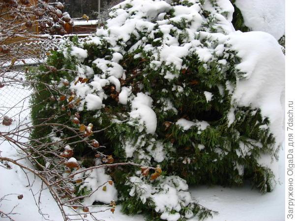 Ликвидация последствий прошедшей снежной зимы. Олин опыт