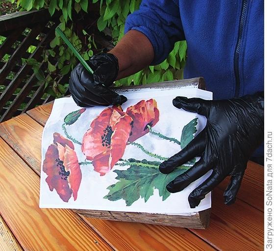 Изображение маков позаимствуйте из книги или с открытки, увеличив его до нужного размера.