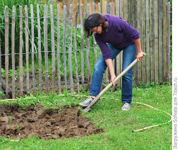 Почву на площадке под газон перекопайте на глубину около 20 см, разбейте крупные комья земли.