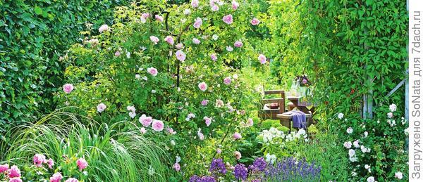 Композиции из благоухающих растений создадут в' вашем саду сказочную атмосферу. Выбираем ароматнейших из ароматных и окунаемся в море позитивных эмоций!