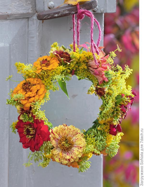 Крупные цветки цинии, золотарник и фенхель чередуются на проволочном кольце венка.