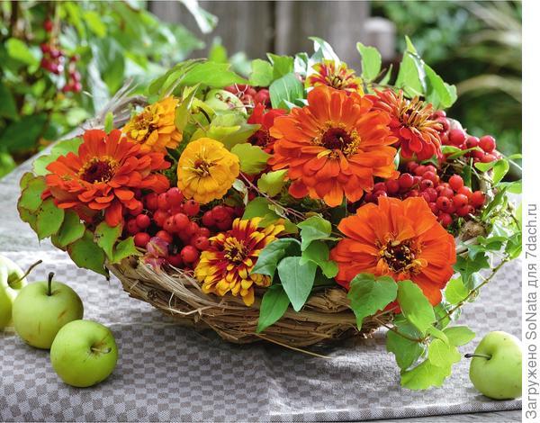 В композиции из листьев дикого винограда, плюща и рябины желтые и оранжевые циннии выглядят естественно.