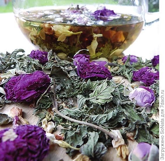 Воспоминания о лете: чай из лепестков роз