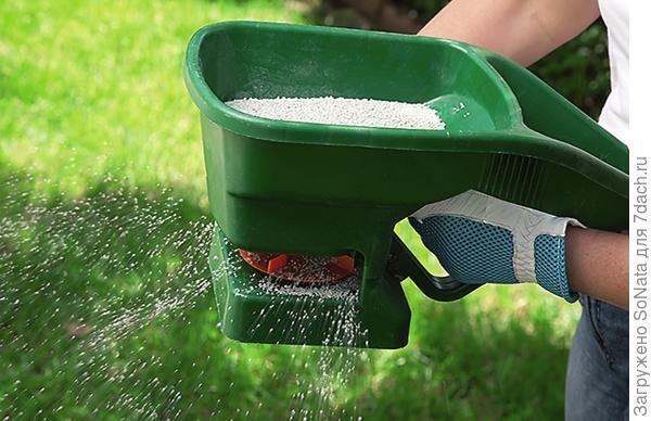 Смесь Green Meadow (Зеленый ковер) отличается устойчивостью к вытаптыванию, позволяет быстро восстановить поврежденные места.