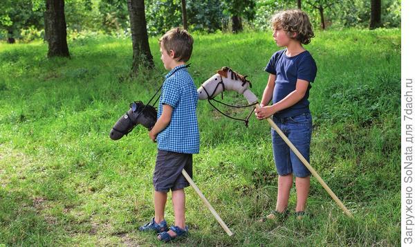 Исследовать близлежащую поляну Федя и Миша решили верхом вместе со своими лошадками.