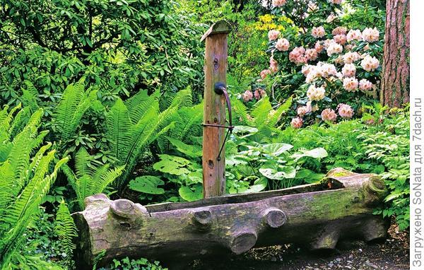 Источник с чашей из бревна недолговечен, зато чудесно вписывается в сад природного стиля.