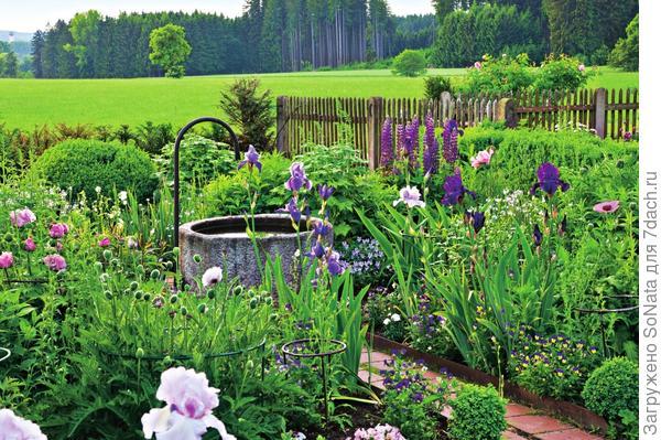 Колодец в этом сельском саду находится над уровнем земли, поэтому его глубина небольшая. Наполняется он водой из-под крана.