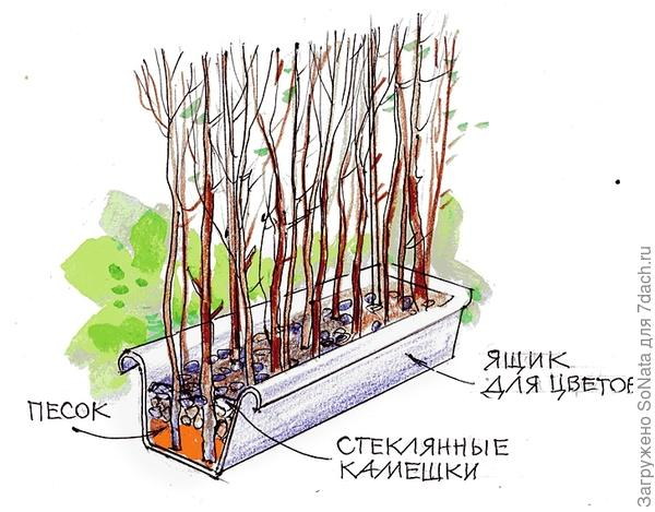 Садовая ширма в ящике