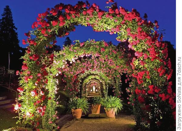 Правильно подобранное ландшафтное освещение превратит дачный участок в сказочное романтическое царство.
