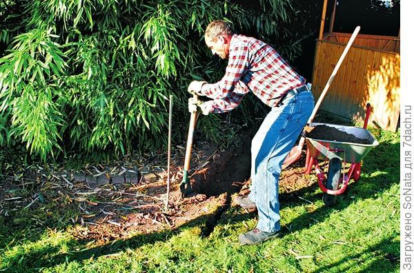 Верхний слой почвы удалите лопатой.