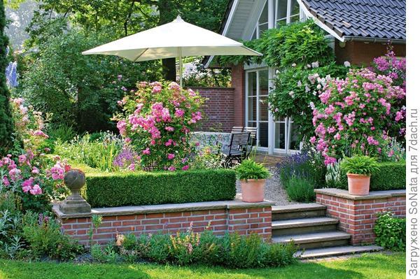 Низкая подпорная стенка удачно сглаживает перепад высот между террасой и садом.