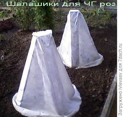 http://www.websad.ru/forum/C/110810.jpg