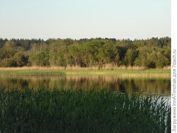 ещё один вид на озеро