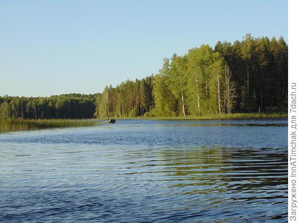 пялос озеро))) рыбы немеряно