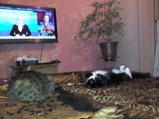 Муся и Дуся)