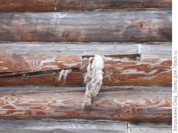 Неплотно свитый, с торчащими волокнами или неплотно забитый жгут будет растащен птицами