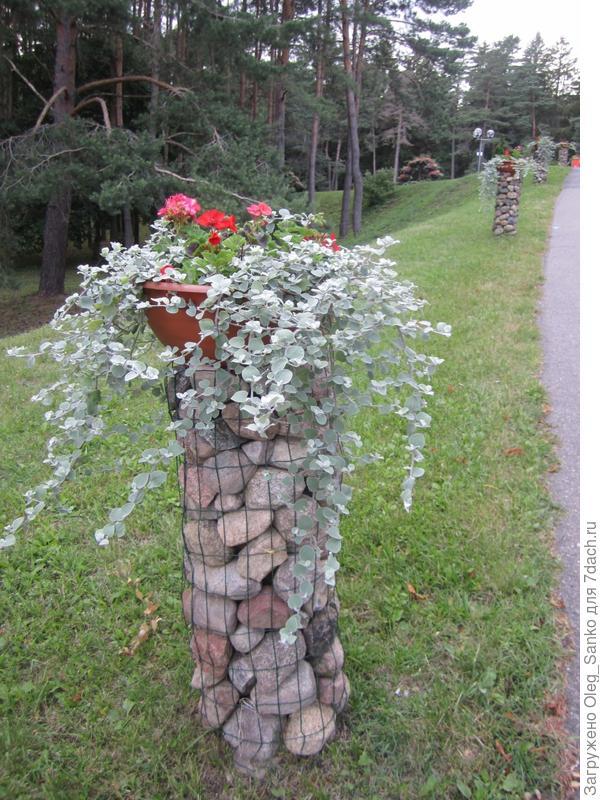 Такими каменными столбиками обрамлены главные дорожки