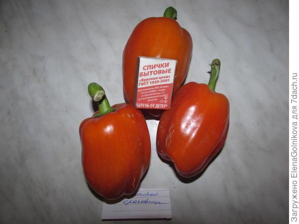 Оранжевое трио