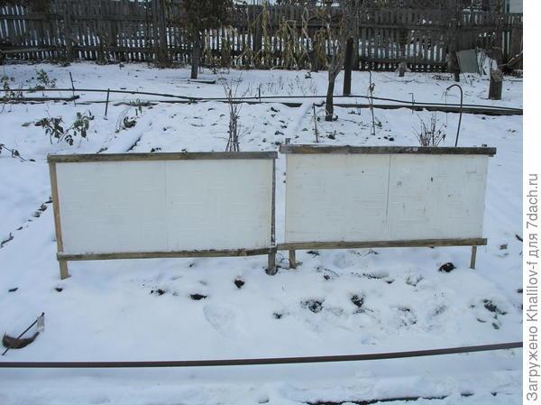 Вот так в один ряд устанавливает щиты зимой в саду