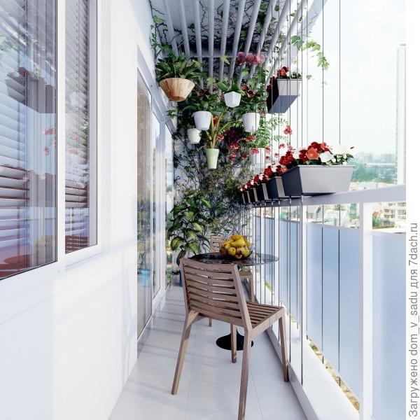 Вертикальный сад
