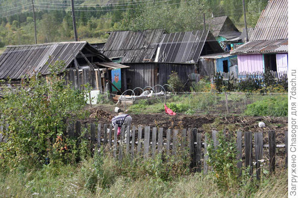 село Отроги