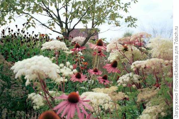 Фрагмент цветника. Фото с сайта static.habitissimo.it