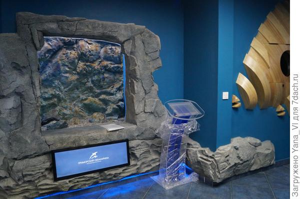 аквариум маленький