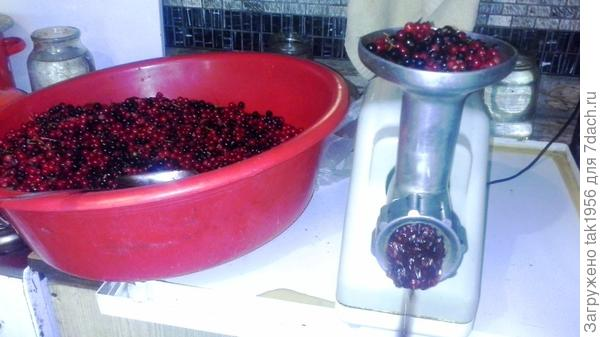 готовим ягоды