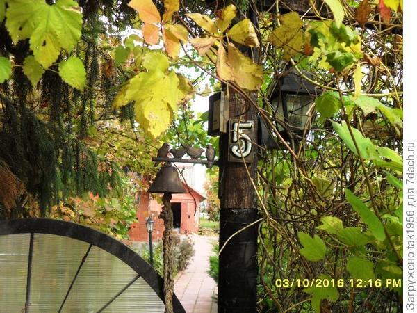 Заходи, Осень! Здесь и тебе рады!