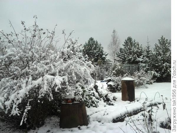 И в огороде - зима