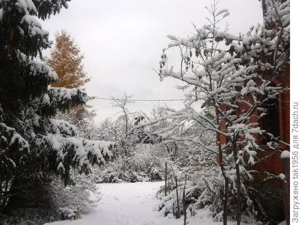 Под окнами дома  - зима