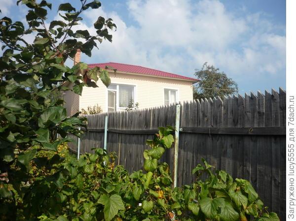Забор моего соседа