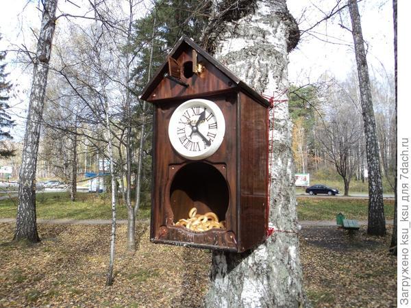 Фото с сайта: fotoham.ru