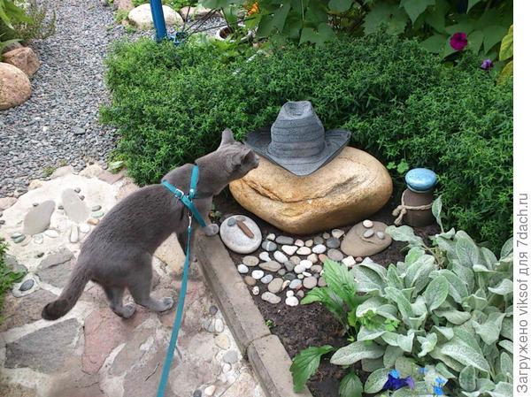 Короче, Витас всё забраковал, потребовал все шляпы убрать и когда будет очень жарко он захочет полежать на лысой голове М