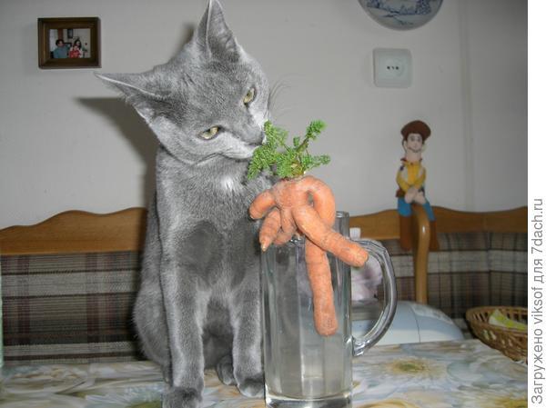 удивлялся урожаям