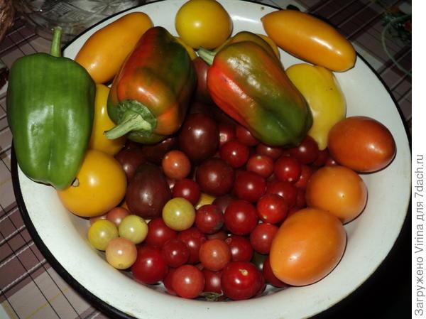 помидоры с перцем