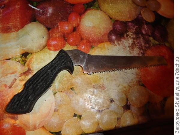 пилочка для резки тыквы
