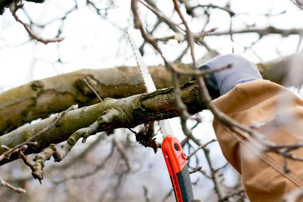 Необходимо использовать для обрезки правильные инструменты