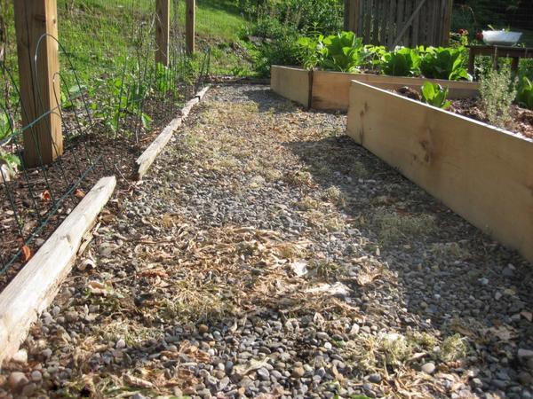 Сорняки после обработки дорожки полностью завяли. Фото сайта thrivefarm.wordpress.com