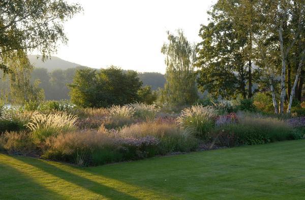 Удольфианский сад. Фото сайта oudolf.com