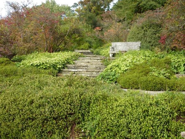 Участок дикого сада Уильяма Робинсона. Фото сайта blog.theenduringgardener.com