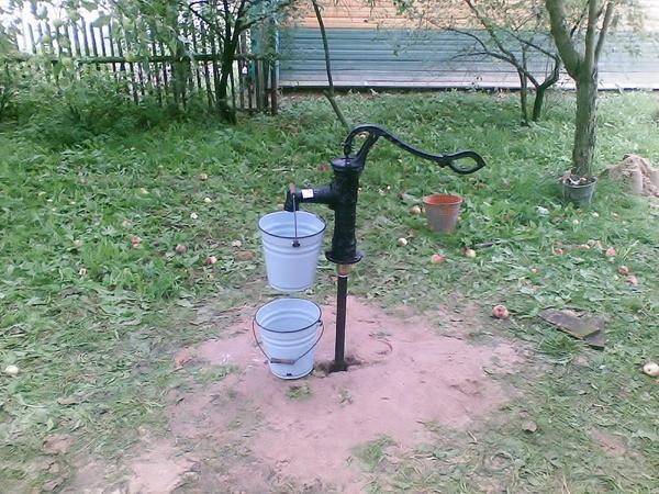 Скважина-игла для полива — отличное решение. Фото сайта fotodecora.ru