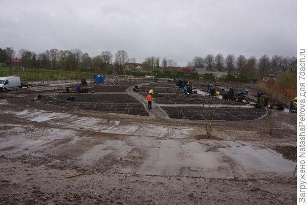 Создание парка Vlinderhof. Фото с сайта http://oudolf.com/
