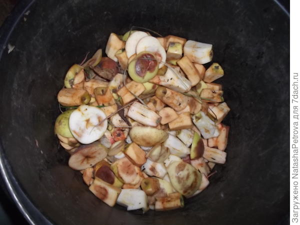 Яблочный мусор: повреждённые участки и сердцевинки