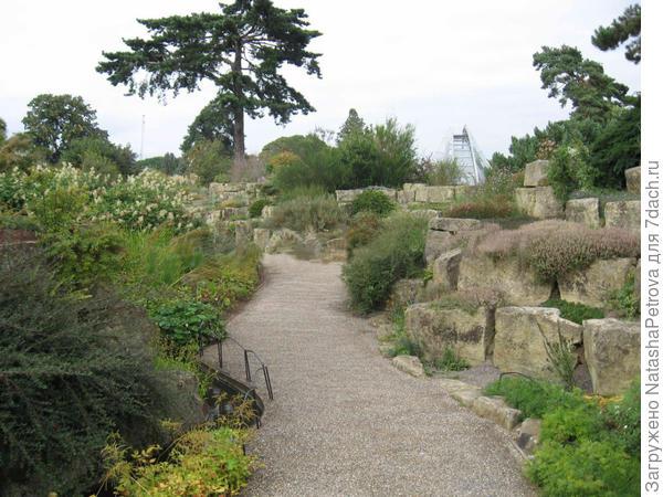 Альпийский участок сада в парке Королевских ботанических садов Кью