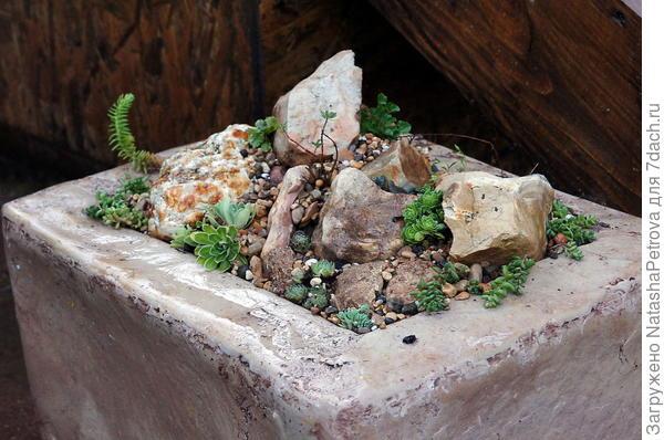 Мини-рокарий в строительном блоке. Фото с сайта http://www.livemaster.ru/