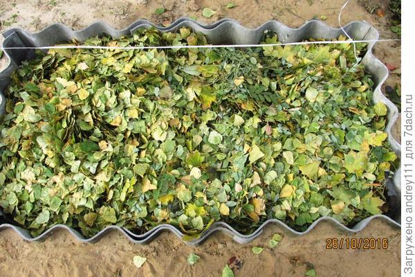 Одеяло из  листьев