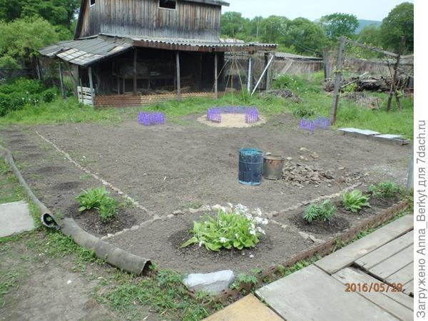 2. очищение почвы вокруг и разбивка цветника
