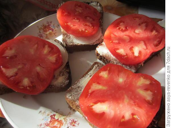 помидоры на лук